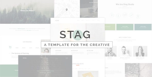 Stag - Portfolio Template for Freelancers and Agencies - Portfolio Creative