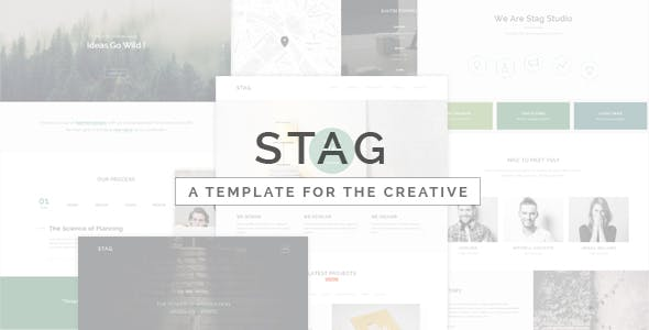 Stag - Portfolio Template for Freelancers and Agencies