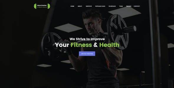Manchester : Single Professional PSD Template
