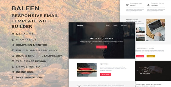 baleen - Responsive Multipurpose Email template with Stampready builder - Newsletters Email Templates