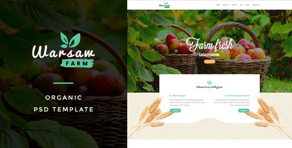 Warsaw : Organic Fruits & Vegetables PSD Template - Creative PSD Templates