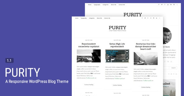 Purity - A Responsive WordPress Blog Theme - Personal Blog / Magazine