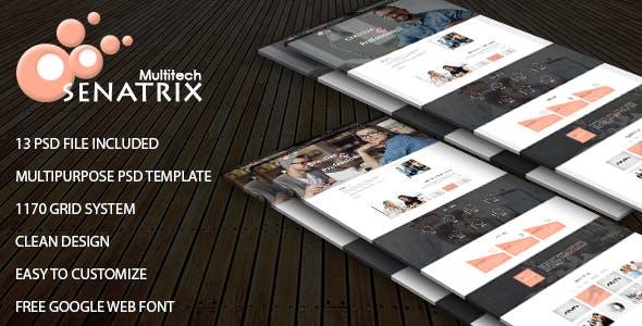 Senatrix-Multi Concept PSD Template