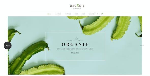 Organie - A Delightful Organic Store PSD Template