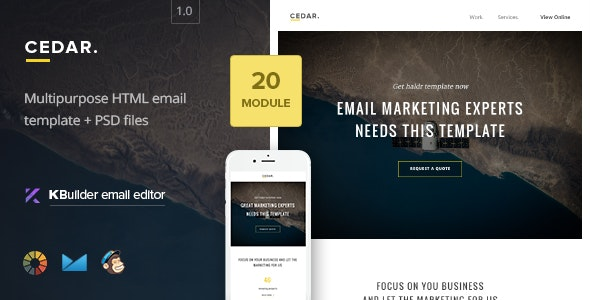 Cedar - Multipurpose Responsive Email Template + Builder - Newsletters Email Templates