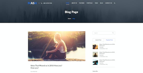 Mash - One Page PSD Template