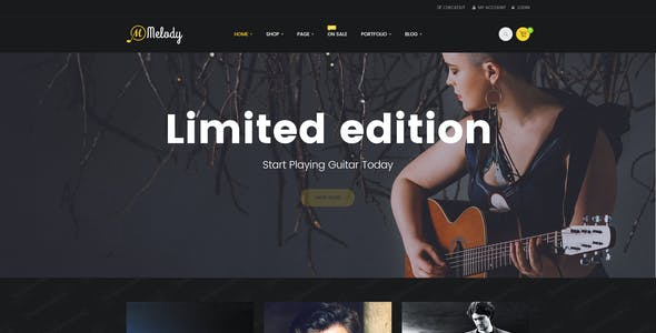 Melody - WordPress Theme for Musical Instruments
