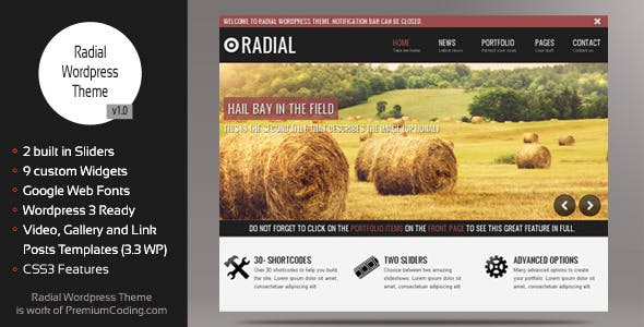 Radial - Creative Blog & Portfolio Wordpress Theme