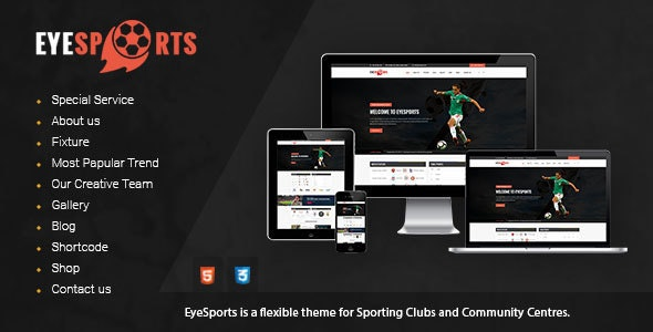 Eye Sports - Fixtures WordPress Theme - Nonprofit WordPress