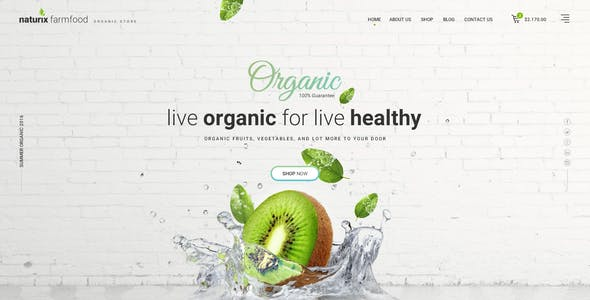 Naturix - Organic Store PSD Template