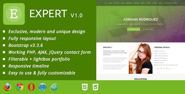 Expert CV / Resume & Portfolio - Resume / CV Specialty Pages