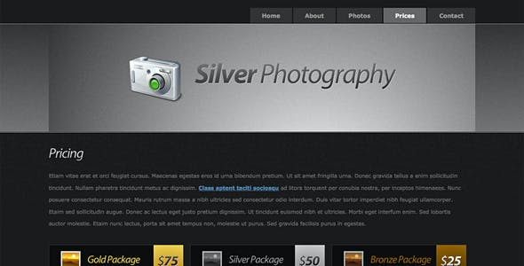 Silver Photography   Photo Template