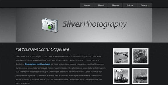 Silver HTML Website Templates from ThemeForest