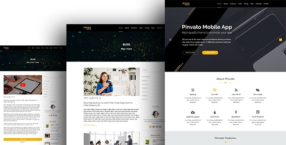 Pinvato Mobile App  - PSD Template - Creative Photoshop