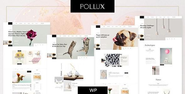 Pollux - Blogs & Magazines Clean Theme - Blog / Magazine WordPress