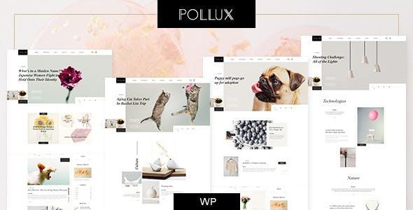 Pollux - Blogs & Magazines Clean Theme