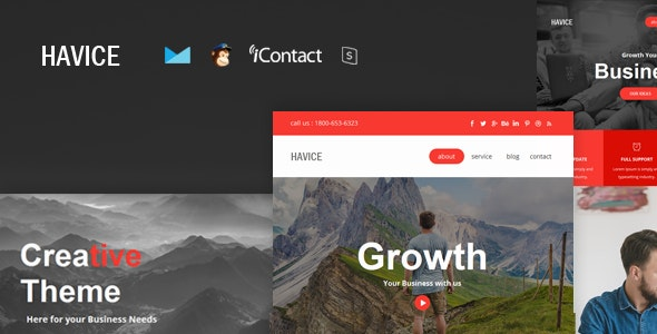 Havice Mail - Responsive E-mail Template + Online Access - Email Templates Marketing