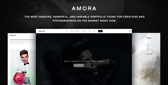 Amora Photography - Creative Multi-Concept Photography Theme - Photography Creative