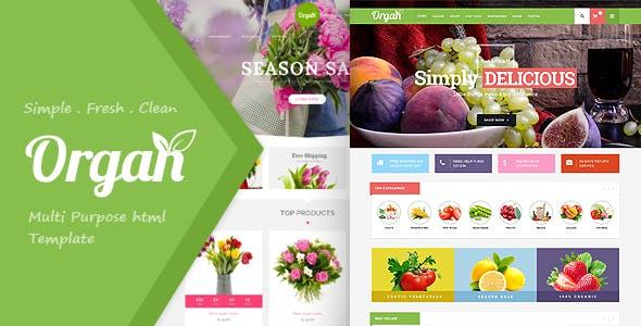 Organ Food Store, Flower Shop Responsive HTML5 Template