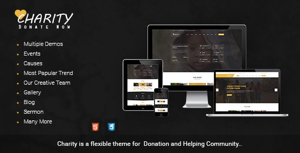 Charity Donation | Nonprofit / Fundraising HTML Template - Nonprofit Site Templates