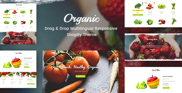 Organic - Drag & Drop Multilingual Responsive Shopify Theme - Miscellaneous Shopify