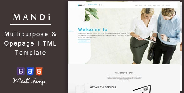 Mandi – Onepage and Multipage Responsive Creative , Corporate, Business & Portfolio Template - Business Corporate