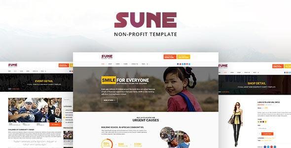 SUNE Non-Profit Template - Nonprofit Site Templates