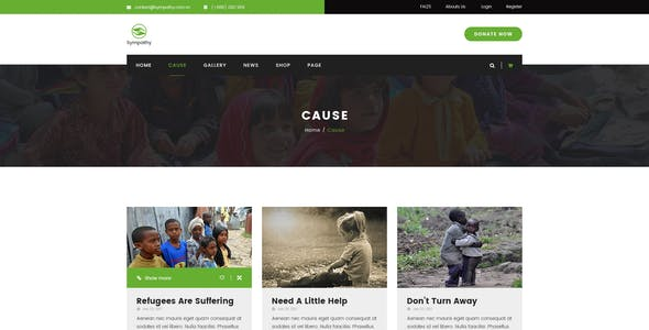 Sympathy   Charity, Non-Profit & Donations PSD Template
