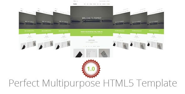Perfect Multipurpose HTML5 Template - Business Corporate