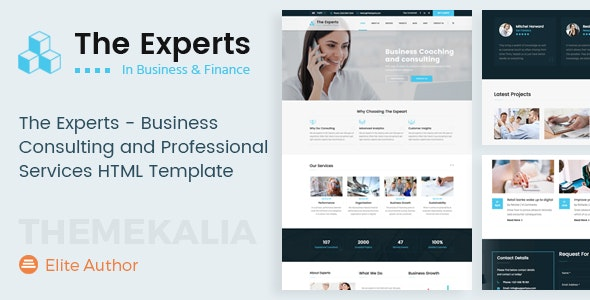 The Experts - Business Consulting and Professional Services HTML Template - Business Corporate
