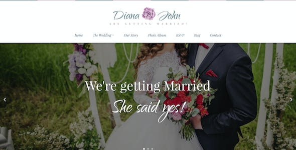 Special Day - Wedding Day, Planner, & Event Theme