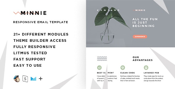 Minnie  – Responsive HTML Email + StampReady, MailChimp & CampaignMonitor compatible files - Email Templates Marketing