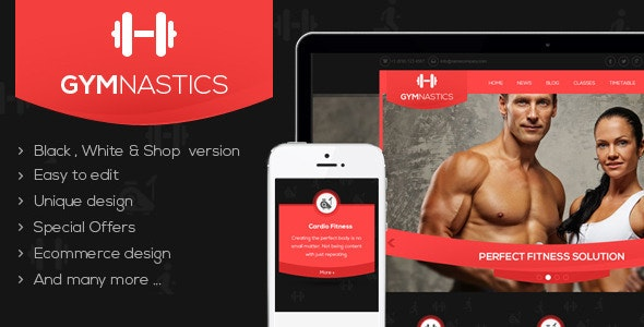 Gymnastics WordPress Theme - Miscellaneous WordPress