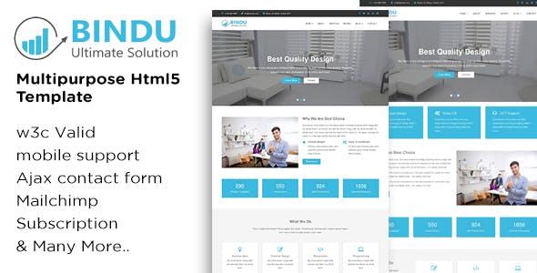 BINDU - Multipurpose HTML5 Template