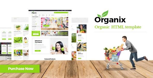 Organix - Organic Product HTML Template - Food Retail