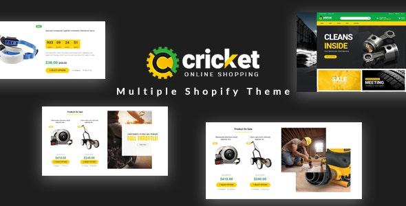Ap Cricket Shopify Theme - Technology Shopify