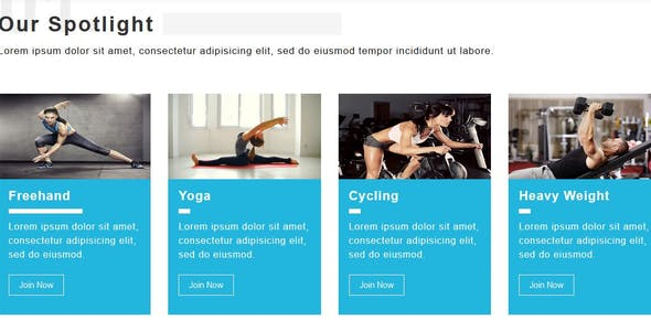 Drastic-Gym & Health Care Html5 Template