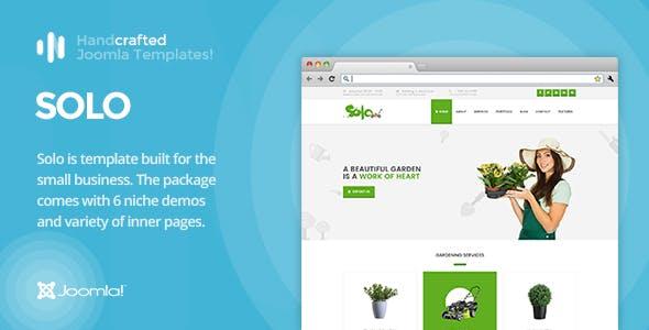 IT Solo - Gantry 5, Small Businesses Joomla Template