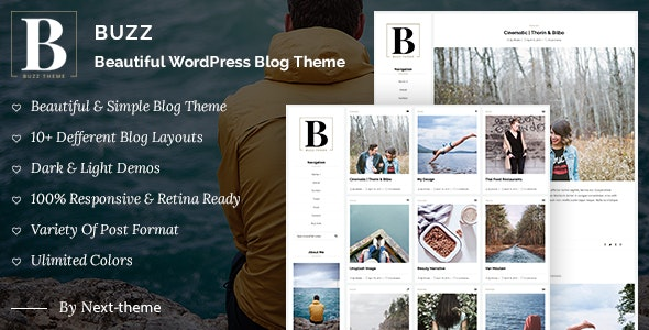 Buzz - Responsive WordPress Blog Theme - Personal Blog / Magazine