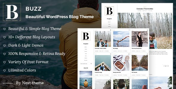 Buzz - Responsive WordPress Blog Theme