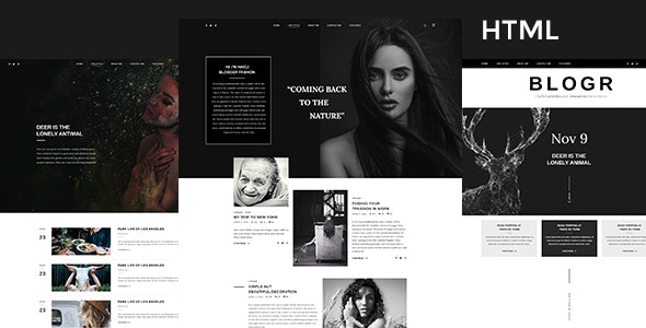 BLOGR - HTML Template for Special Bloggers - Personal Site Templates