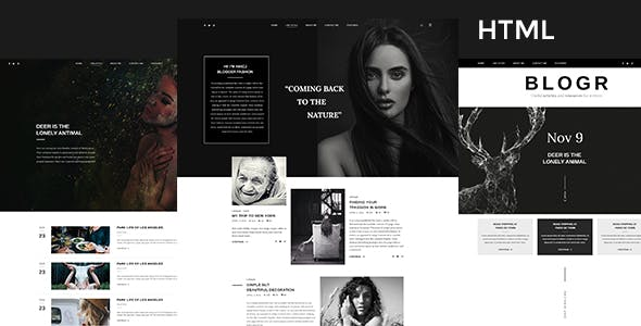 BLOGR - HTML Template for Special Bloggers