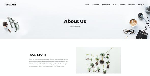 Elegant | Creative Multipages and One page HTML5 Template
