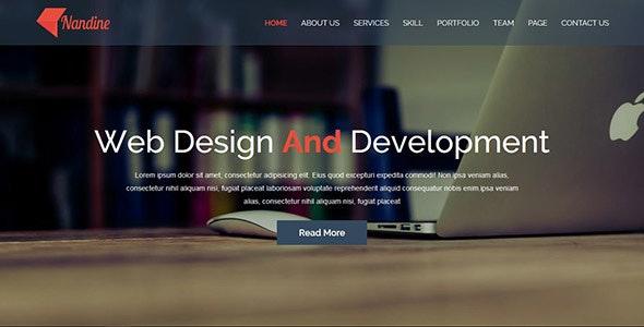 Nandine - Responsive Portfolio And Blog Multipage HTML5 Template - Portfolio Creative