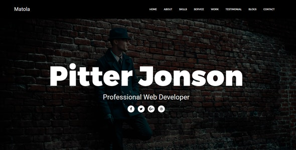 Matola - Personal Resume Template - Personal Site Templates