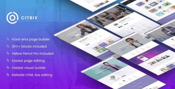 Citrix - Business WordPress Theme