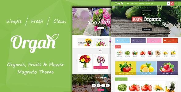 Organ - Organic Store & Flower Shop Responsive Magento Theme - Shopping Magento