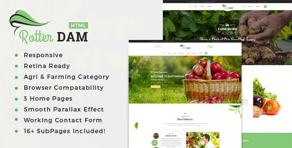 Rotterdam - Organic Food and Beauty Products HTML Template - Food Retail