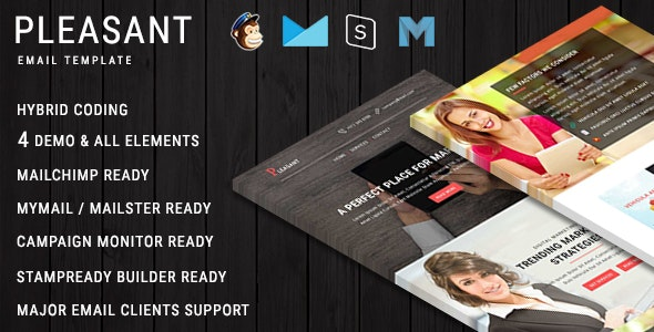 Pleasant - Business & Marketing Email Templates With Online Builder Access - Newsletters Email Templates