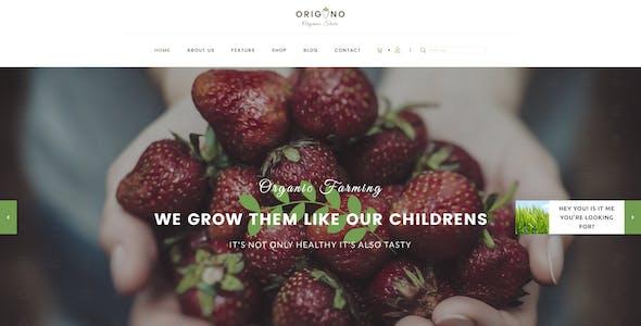 Origano -  Organic Store PSD Template
